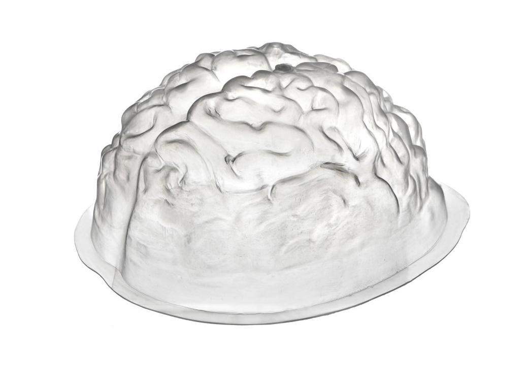 Brain Shaped Jelly Mould