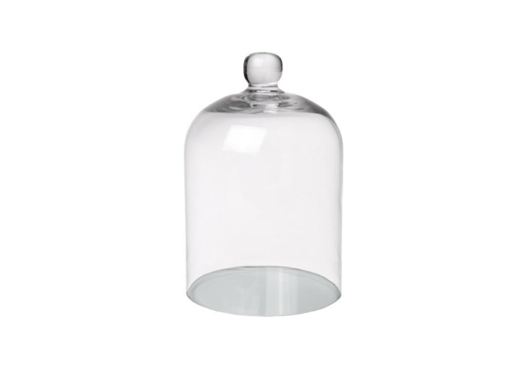 Small Glass Dome