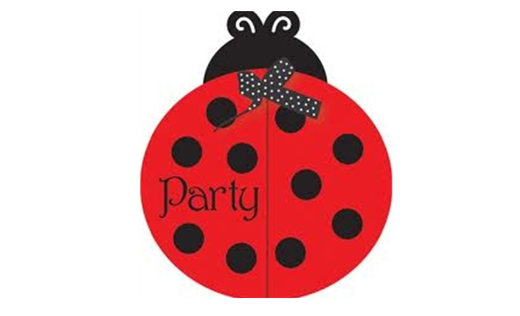 Ladybug Invitations - 8pk