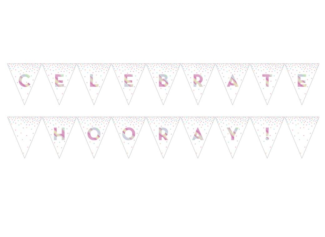 Iridescent Celebration Bunting