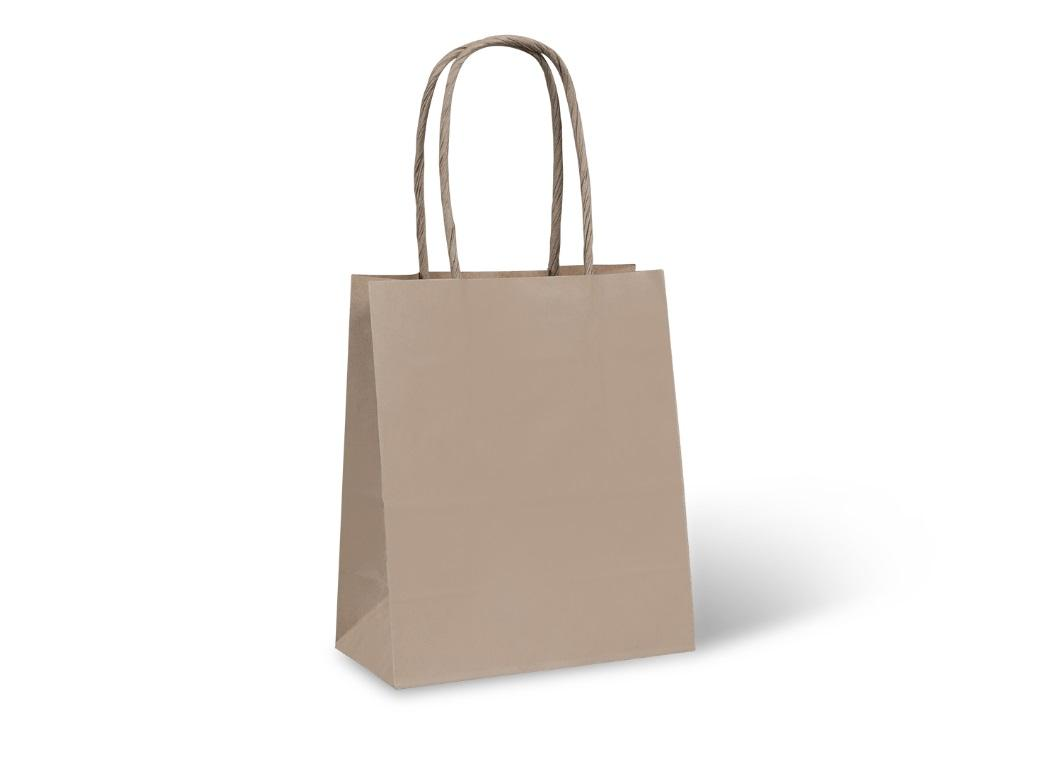 Kraft Paper Bag with Twist Handle