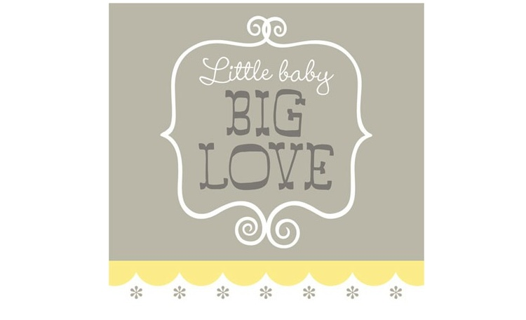 Little Baby Big Love - Lunch Napkins 16pk