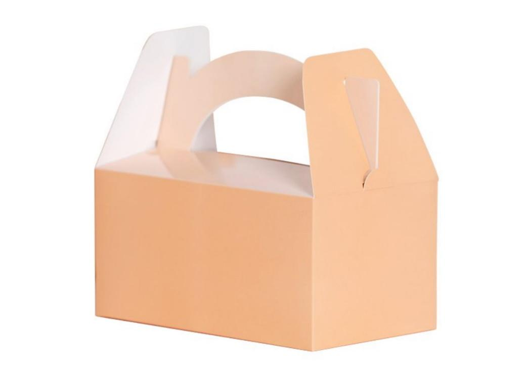 Lunch Boxes 5pk Peach