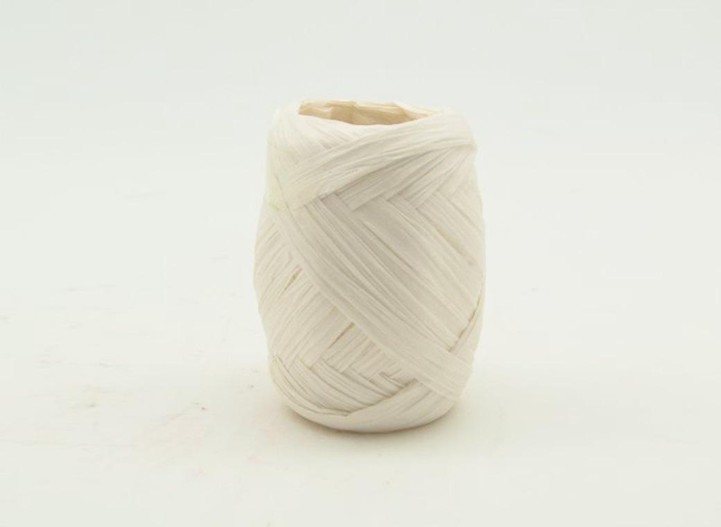 Paper Raffia Ribbon 10m - White