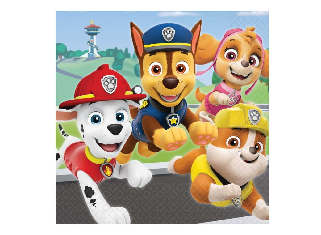 Paw Patrol Adventures Lunch Napkins 16pk