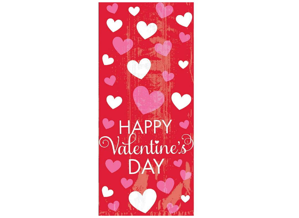 Valentine's Day Cello Treat Bags 20pk